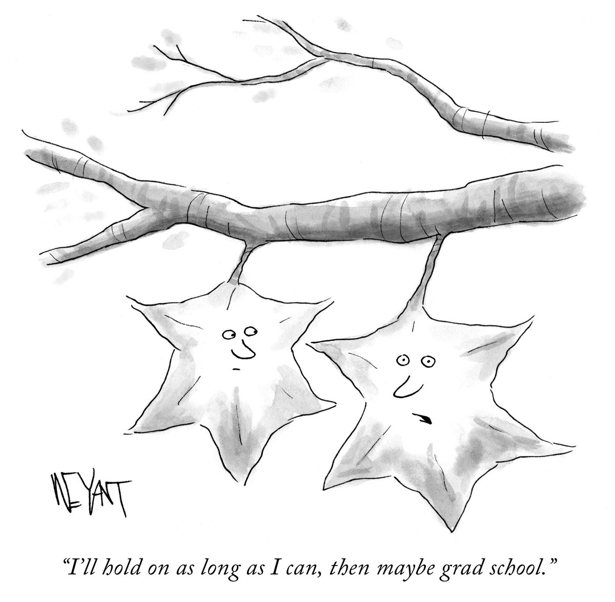 RT @NewYorker: The leaves are in their late 20s.