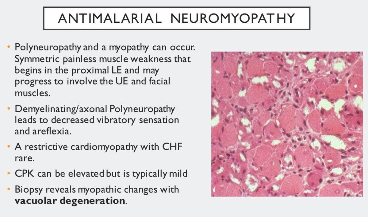 Steroid myopathy ck steroid availability