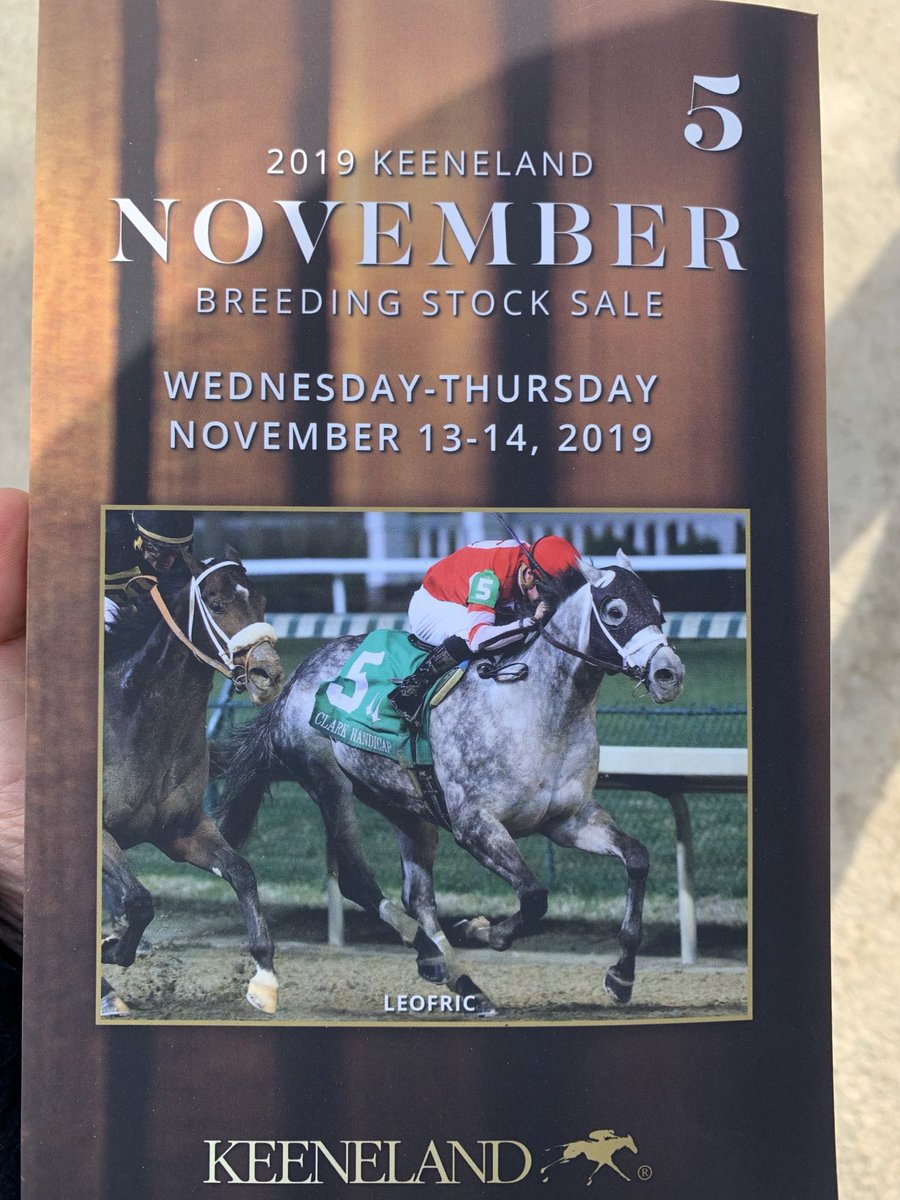 test Twitter Media - Looks who's on the cover of @keenelandsales Book 5 (racehorse day). G1W Leofric purchased for $100k for Steve Landers out of this sale in '16, earned just shy of $1M. Trained by @bradcoxracing he was such a warrior 💪🏻 now buying mares to support him as a stallion in 🗽 NY https://t.co/EE4RtOcgI2
