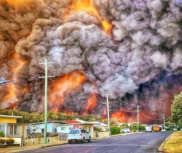REALITY 2019 (Australia - NSW) This is a climate emergency