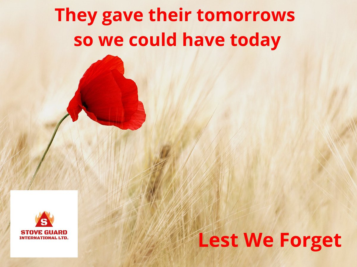 test Twitter Media - #remembranceday #lestweforget #verteransday #Veterans #poppies https://t.co/kZ6zwnuEyh