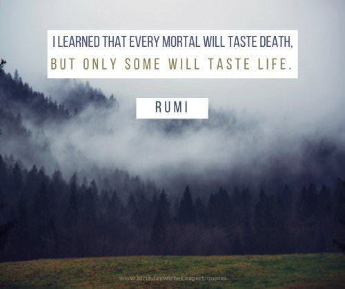 #learned #Rumi #Quote #QuotesToLiveBy #Love #Life #Death #Taste #Happiness #Growth #MoveOn #Forward #Psychic #Medium #reverend #LifeCoach #Inspiration #Inspire