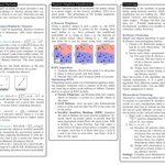 Image for the Tweet beginning: A 9 Page Data Science