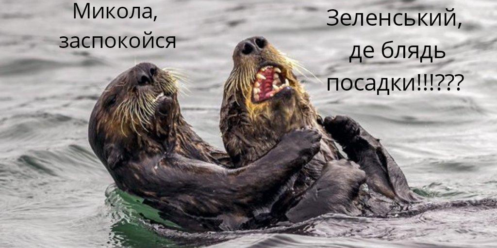 """Если цель - обсудить особый статус Донбасса, то встречаться нет смысла, - Верещук о предложении Назарбаева по поводу встречи Зеленского и Путина """"тет-а-тет"""" - Цензор.НЕТ 9492"""