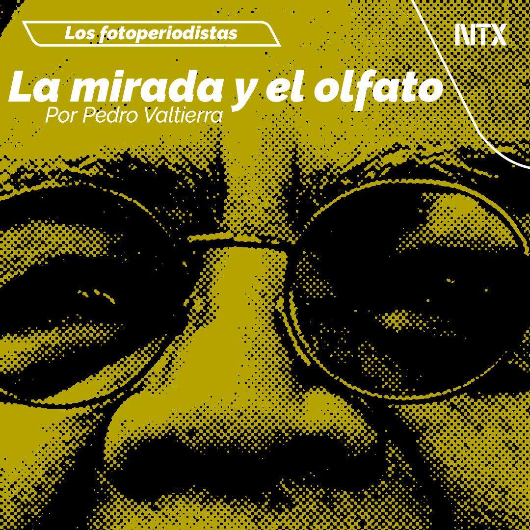 🔶#ESPECIAL | «La mirada y el olfato». Por Pedro Valtierra➡️http://ow.ly/xKn550x7VL3• #Notimex