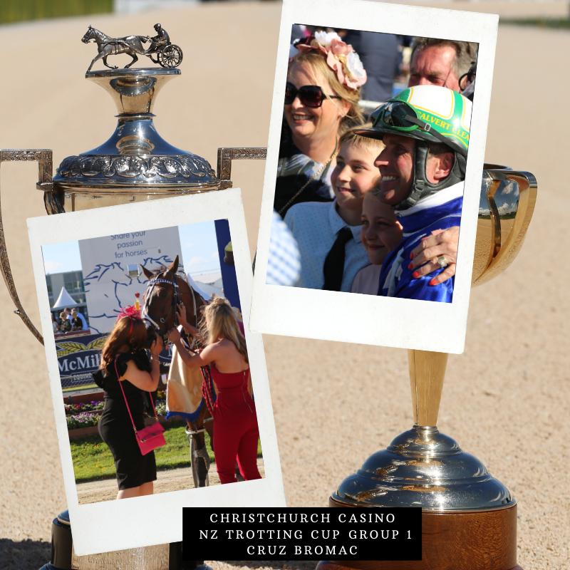 Harness Racing NZ