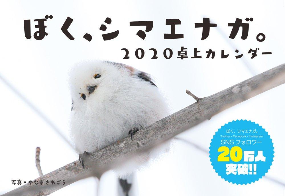 【Amazon限定】ぼく、シマエナガ。2020卓上カレンダーのおまけでついてくる年賀はがき(北海道版)がなくなりそうだったから追加でどーんしました(・▲・)ドーン ⇒