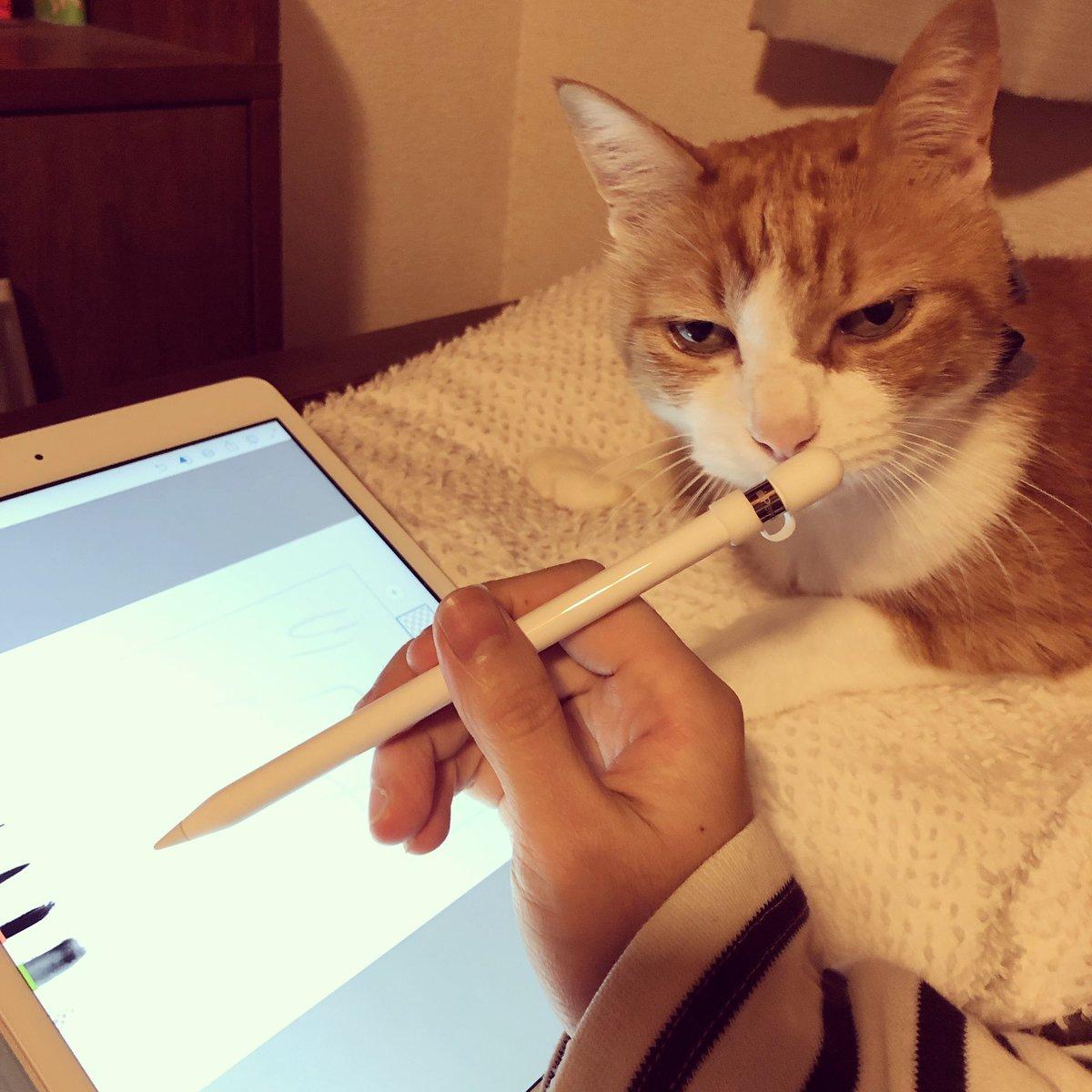 iPadなら寝ながらでも絵が描けるか検証しようとしたけどもう眠い。