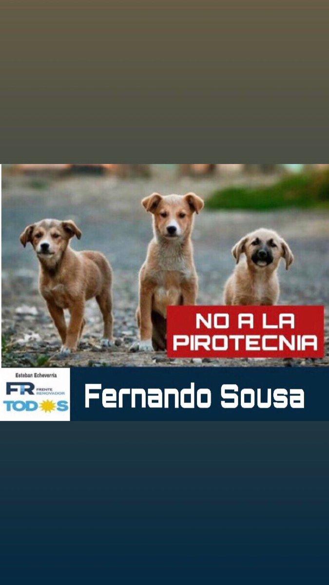 #FernandoSousa❤ #ViviHeilingConcejal❤ #EstebanEcheverría #EsConTodos #AlbertoFernandez #SergioMassa #AxelKicillof https://t.co/A6reEmmqlb