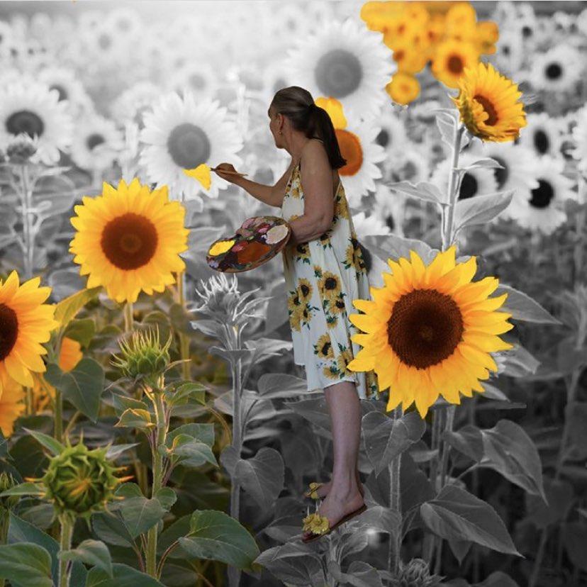 Sunflowers in bloom🌻 Made with #Pixomatic by @ronaritchieshepherd #sunflowers🌻 #photomanipulation #igcreative_editz #discoveredit #edit_grams #edit_mania__ #edit_perfection #visual_creatorz #visualambassadors #visualart #visual_awareness #digitalart #mobileediting #mobileedit