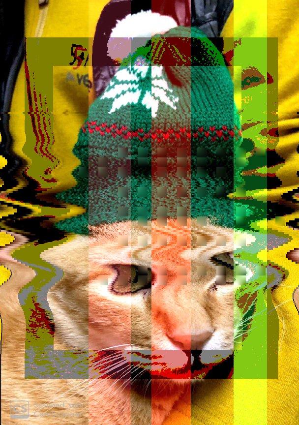 👓🏳 cat glitch nodejs cosine bot codeart generative color Origin img by @bijutsu1