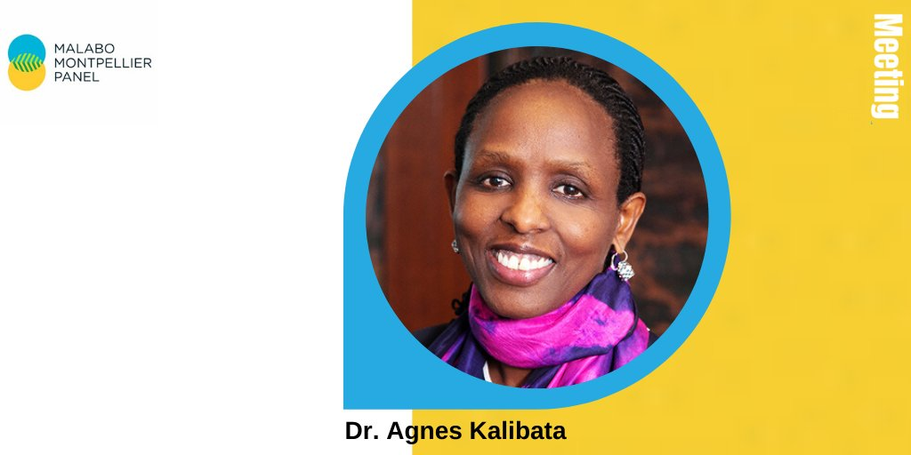 test Twitter Media - It's week 6 of #MaMoFaces and we're delighted to introduce you to Dr. @Agnes_Kalibata, President of @AGRA and former #agriculture minister of #Rwanda 🇷🇼. Take look at her profile and bio➡️https://t.co/cemJF6DBcM. https://t.co/XH6ZmiC6QF