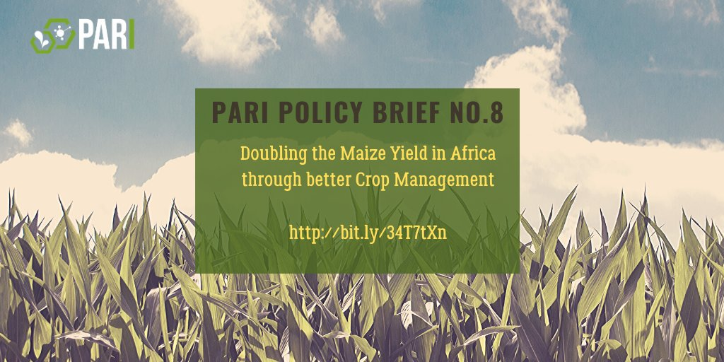 @LeventisAgriSch @FAONigeria @FmardNg Our policy brief provides recommendations on how current #maizeproduction in #Africa could potentially double at many locations through the adoption of a combination of management practices. http://bit.ly/34T7tXn https://twitter.com/LeventisAgriSch/status/1130429477190807552…pic.twitter.com/yr0i20mMyH