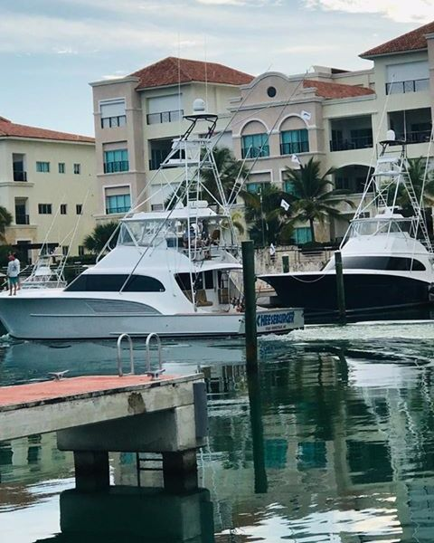 Cap Cana, DR - Cheeseburger went 4-6 on Blue Marlin.