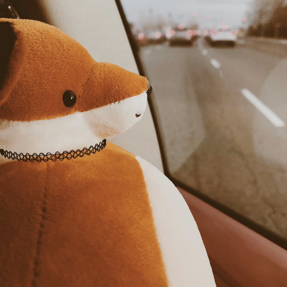 On long car rides, Bagstock likes to pretend the car is being chased by all the vehicles in the rear window. ⁣ ⁣ Sometimes, those cars catch up and even pass. But Bagstock just waves as they go by. He's not a sore loser. ⁣ ⁣ 📷: @tinyheadedcafe #BagstockTheFox #THK #toys