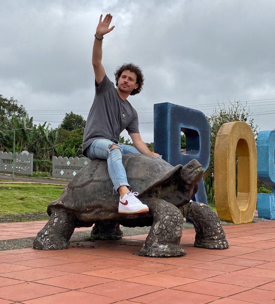 Llega más rápido esta tortuga que tus respuestas a mis mensajes