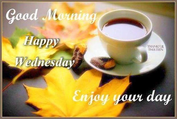 Good Morning All, Sending Many Blessings  Have a Wonderful Wednesday!  #love #goodmorning #tweegram #gratitude #wednesdaymorning #amazing #hemp #greetings #sun #morning #instalike #riseandshine #memeoftheday #coffee #cbdoil #motavation #wednesdaywisdom #refresh #universe #wakeup