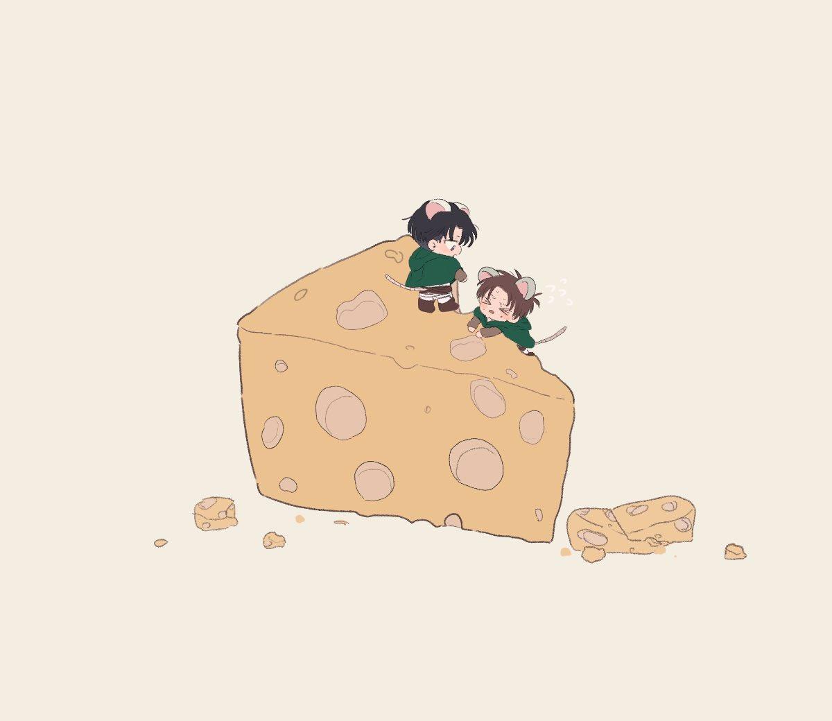 壁外チーズ調査🧀