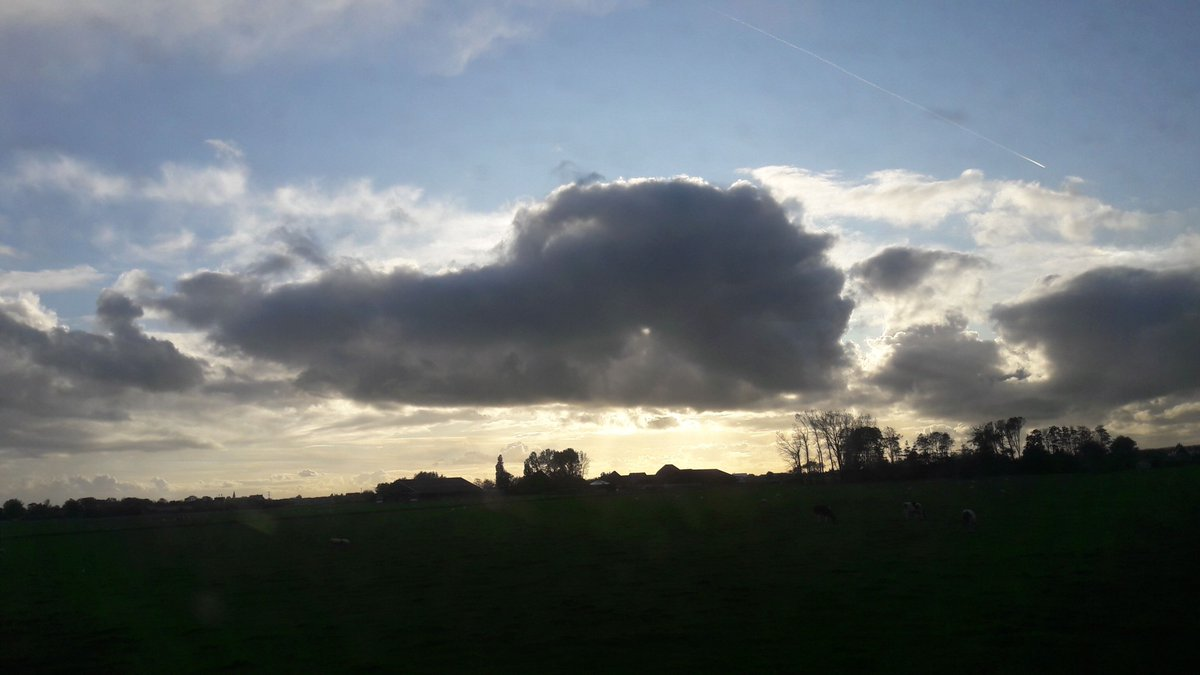 Gator cloud during commute <br>http://pic.twitter.com/nOMNAcvDIB