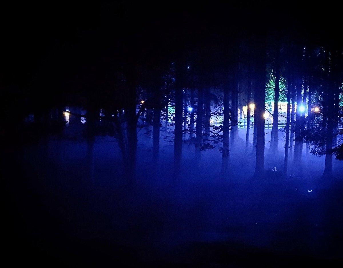 Chilly but excellent night at @DCCPIlluminight! #IlluminightLidl 🌓💡🌲🌌