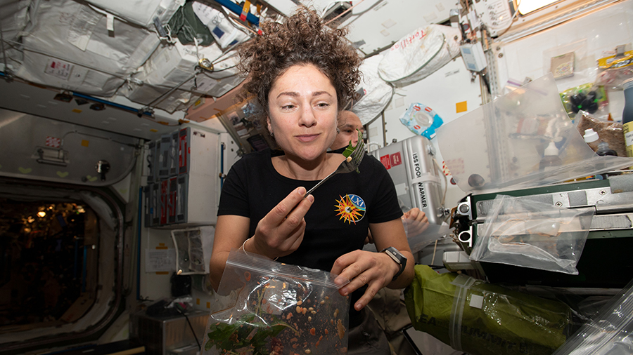 It's harvest time on @Space_Station! 🍃 Astronauts have been cultivating fresh mustard greens in the station's Veggie facility. Today, they cut some of the leaves — half go in freezers for later analysis on Earth, and half are for the crew to taste. More: https://go.nasa.gov/2XgyrFR