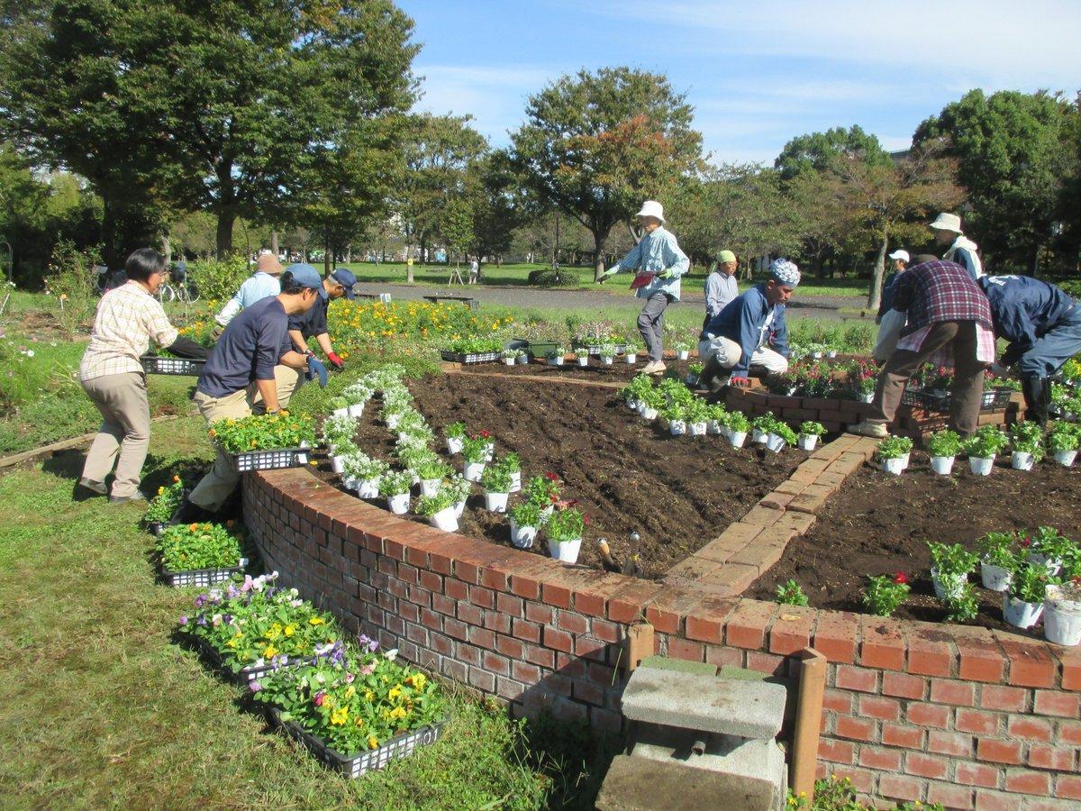 第3回花壇植付け体験実施しました‼10月26日に駅すぐのボランティア花壇にてパンジー、ビオラ、アリッサム(見頃)ノースポール、キンギョソウ(4~5月見頃)を皆さんと植付しました。※次回は12月5日、10時から12時までを予定♪ ボランティアさんと一緒に花壇に季節折々のお花を植えてみませんか?