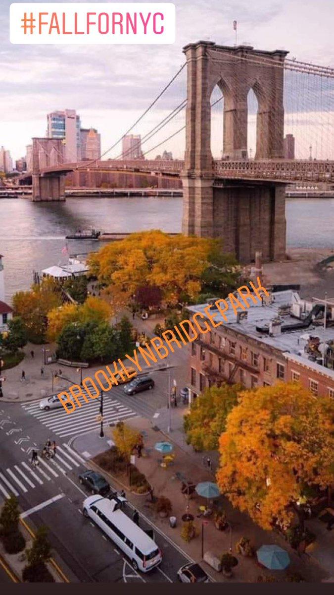 #ScapeToNewYorkCity it's always a good idea! #BrooklynBridge #BrooklynNY  #TravelNYC #VisitNYC #VisitBrooklynNY #ThisIsNYC #NewYorkCityLovers #NYCLovers #OnlyinNYC #OnlyInBrooklyn  #MyBrooklynBridge #FallForNYC Wishing to everyone a blessed Thursday @DUMBOBID #Brooklyn  #Peacepic.twitter.com/S39v1in6rI