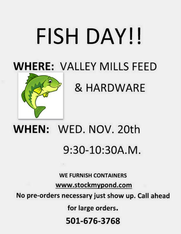 Fish truck is coming!