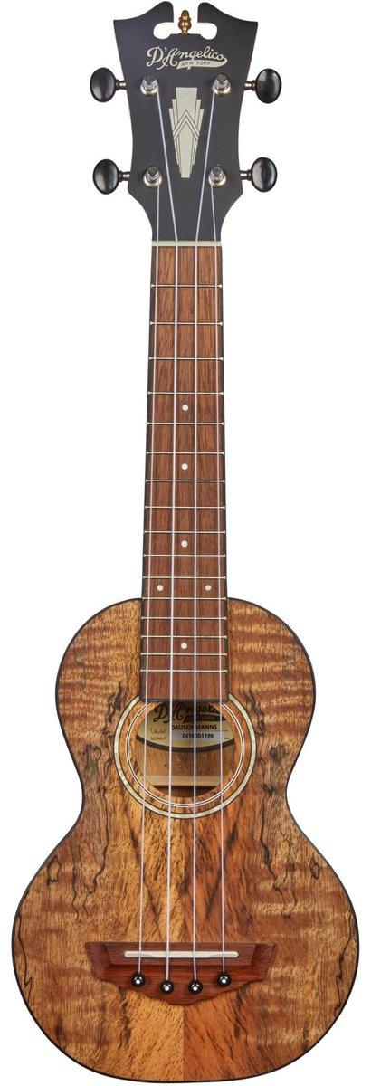 d'angelico guitars montauk spalt mango soprano ukulele