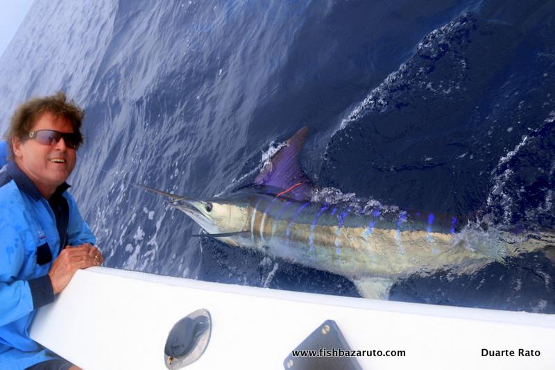 Bazaruto, Mozambique - Capt. Duarte Rato on Vamizi released a Striped Marlin and a Black Marlin.