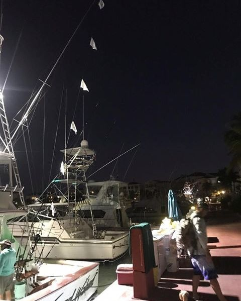 Cap Cana, DR - Wicked Wahine went 6-10 on Blue Marlin.