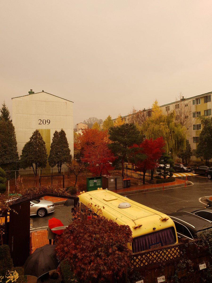 Fall<br>http://pic.twitter.com/cZQP7z0MJ2