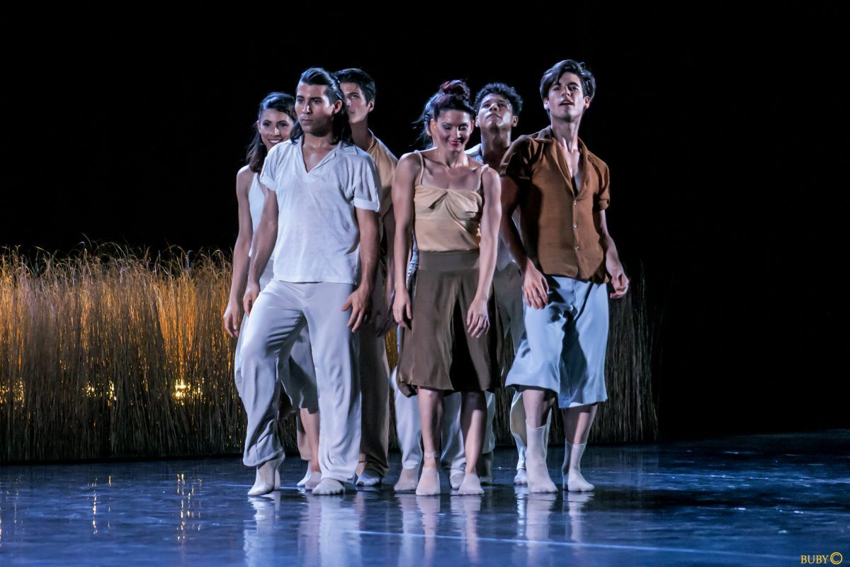 """5 STAR """"The sheer physicality of movement is simply stunning"""" buff.ly/2Kn5P8D via @BromStandard"""