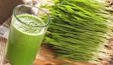#cleaneating #wellness #detoxjuice #fitness #organicjuice #freshjuice #rawfood #juicelife #celery #rawvegan #smoothie #therightgreens #bhfyphttps://adorablesoul.com/wheat-grass-benefits/…