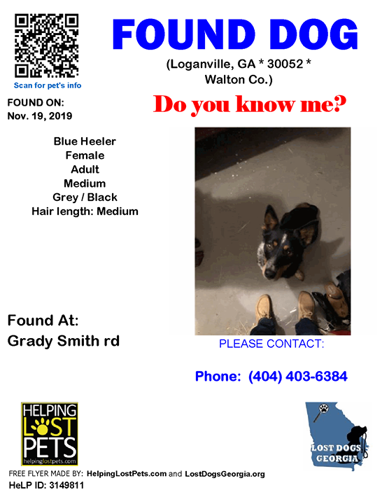 **FACEBOOK LINK: https://ift.tt/2XESPkj ** Do you know this Dog? #Loganville (Grady Smith rd)  #GA 30052 #Walton Co. , #Found #Dog 11-19-2019!, Female #Blue Heeler Grey / Black/  CONTACT Phone: (404) 403-6384  More Info, Photos and to Contact: https://ift.tt/2QJfOJE  To see …