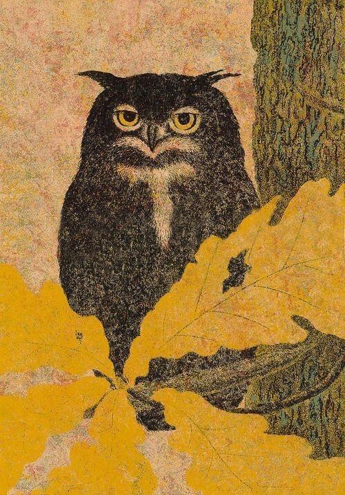 Yukio Katsuda ( b.1941), Owl, 1977, Serigraph (Silkscreen).