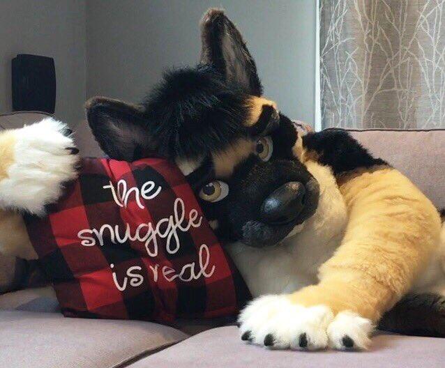 Snugs?   #FursuitFriday <br>http://pic.twitter.com/P2A5pvQL51