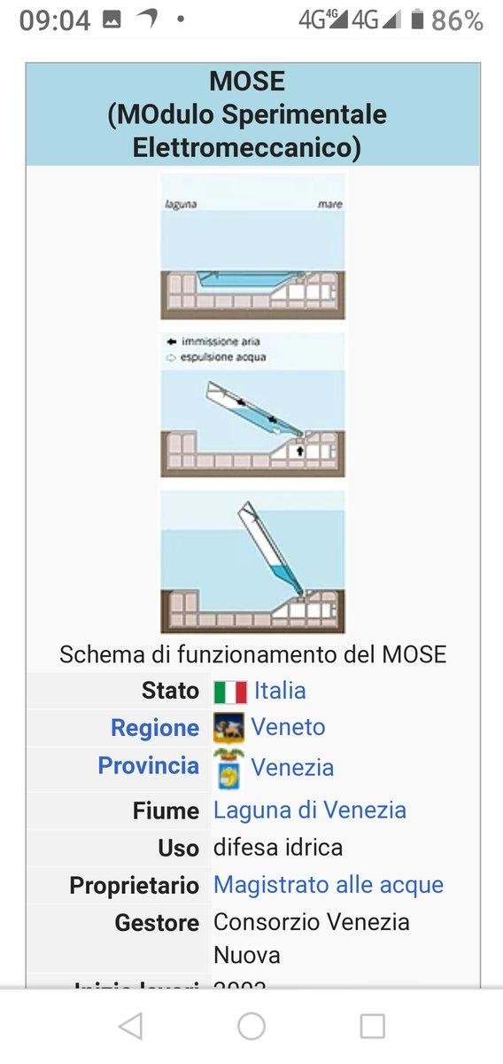 #mose