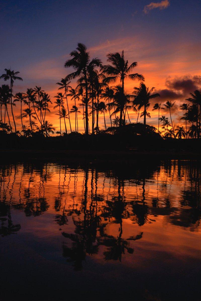 The sunsets in paradise. <br>http://pic.twitter.com/4ak7PslPQr