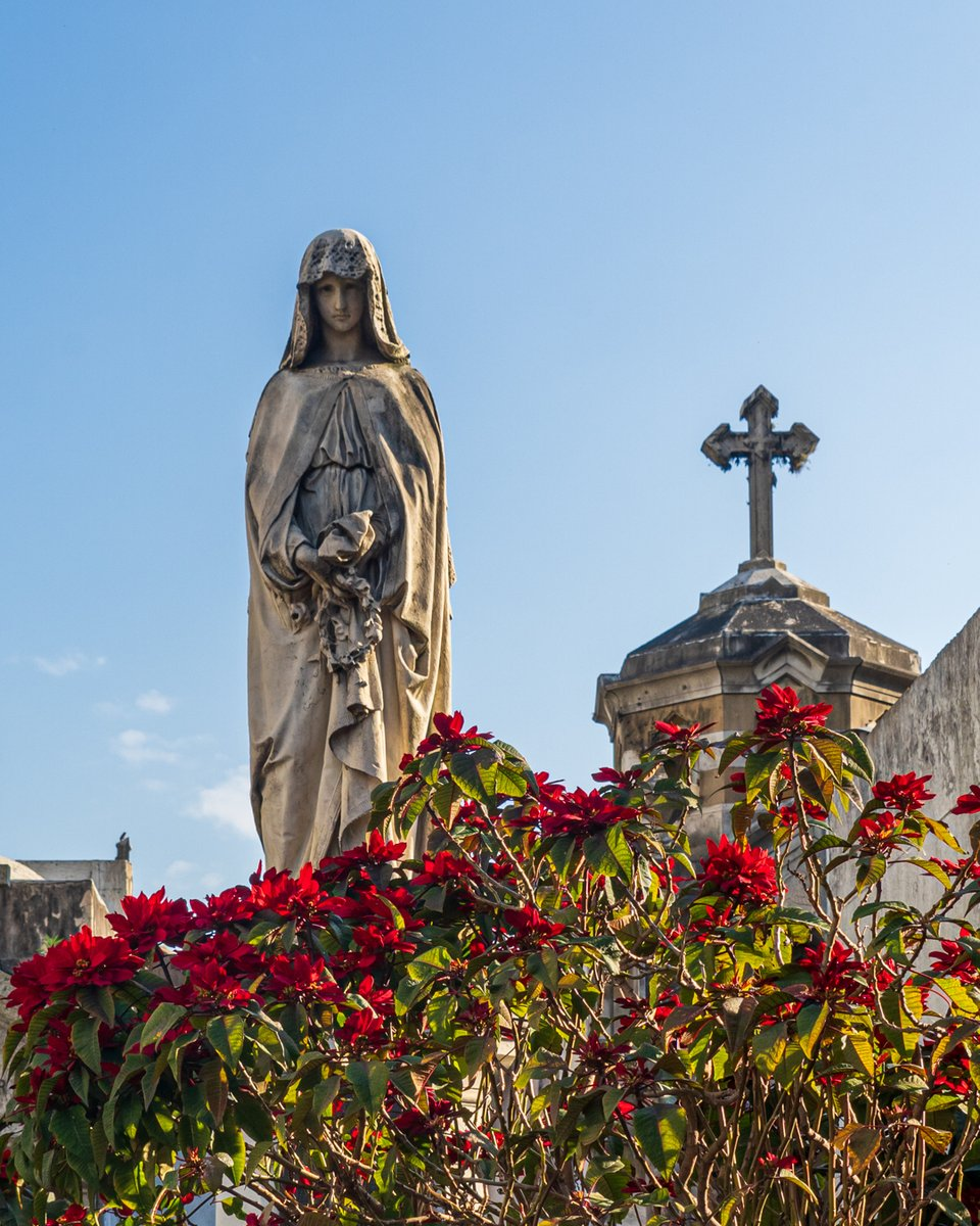 Sacred time of siesta - who needs a fiesta when you can have a siesta.  #larecoletacemetery #recoletabuenosaires #cementeriodelarecoleta #buenosairesphoto #spanishculture #siestatime #worldtravelpic #aroundworld #awesomeglobe #wondermore #globetrottingpic.twitter.com/outwuW1IqF