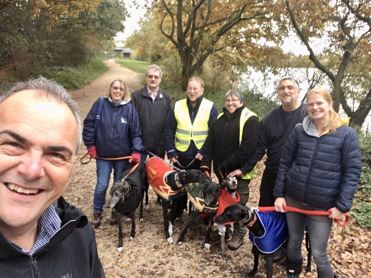 A dog walking afternoon with the #Lincolnshire Greyhound Trust. <br>http://pic.twitter.com/LR8c8C1B30