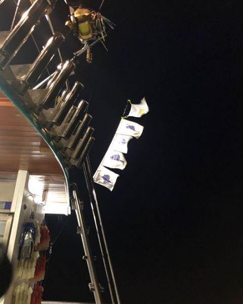 Phuket, Thailand - Fish Eagle released 4 Sailfish.