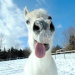 Image for the Tweet beginning: Smile! It's Friday! #ajaxdowns #picovdowns