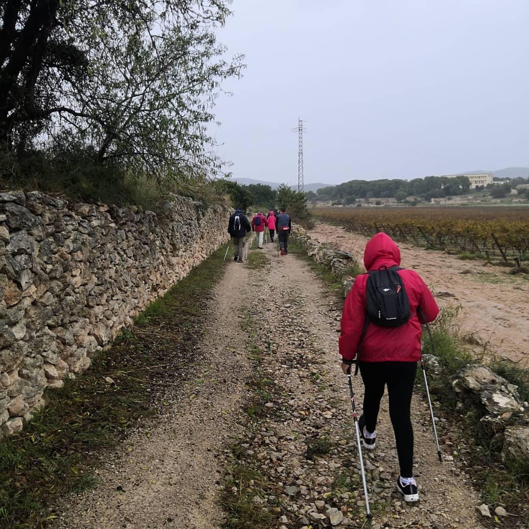 Al grup de Ribes dels tallers de marxa nòrdica no hi ha pluja ni fred que els aturi! ❄️❄️❄️💪🏻💪🏻💪🏻👏🏻👏🏻👏🏻 #marxanordica #nordicwalking #vidadaludable #esportpertothom #salut #spribes #ribes  #tempsdelleure https://t.co/9mPio4EAWK