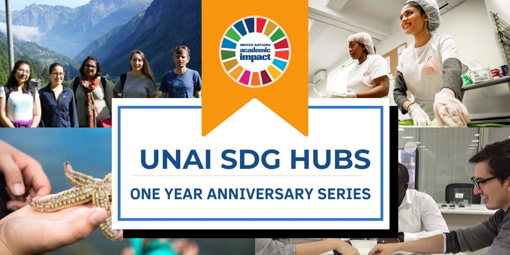 One year ago @ImpactUN launched the #SDGHubs! These hubs work to promote: 🔬 Innovative scholarship 🤝 Engagement with other institutions 💪 Empowerment of youth Check out highlights of their work in this anniversary article series: 🔗bit.ly/2KgKXzU #GlobalGoals