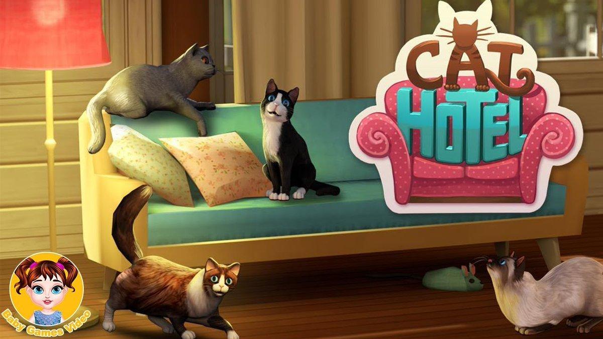 Картинки кошек игру