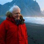 Image for the Tweet beginning: David Attenborough's new series will