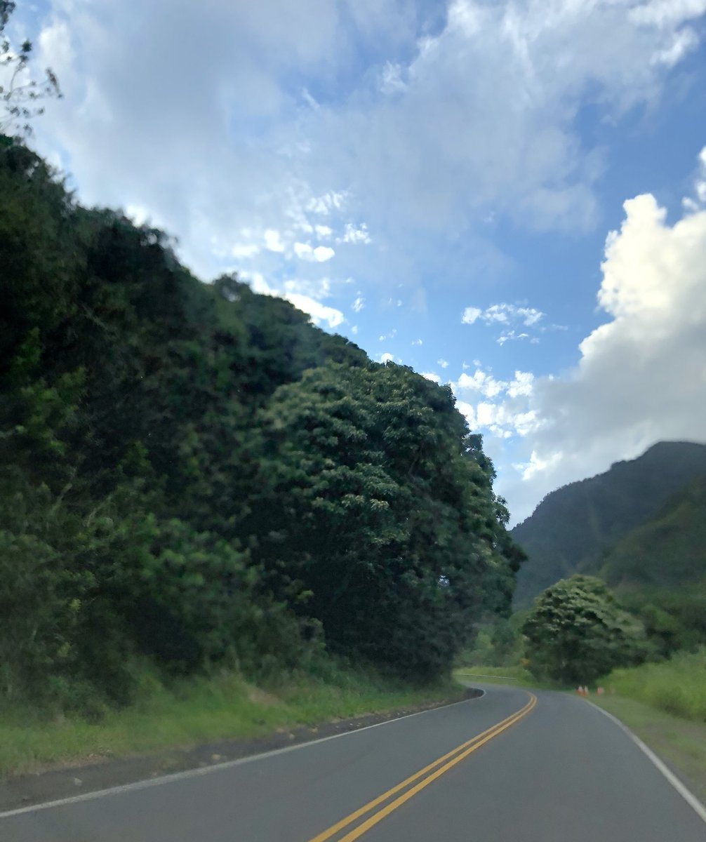 test Twitter Media - Warm and mostly overcast in Iao Valley. #cmweather #Maui #Mauinokaoi #IaoValley #MagicalMaui https://t.co/RpvcvlB4Ul