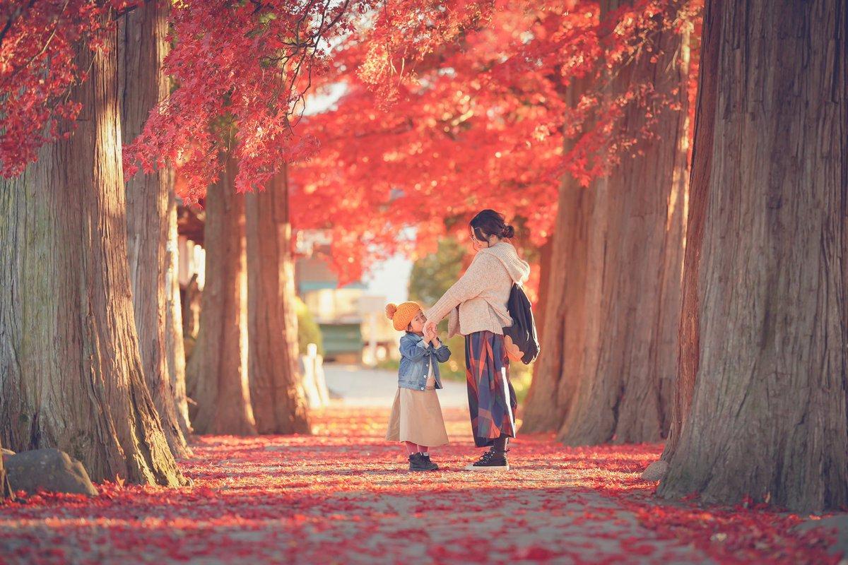 35年の人生で一番美しい紅葉でした。この風景を娘は覚えててくれるのかな。