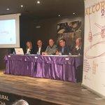 Image for the Tweet beginning: El Consorcio del Tambor y